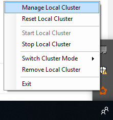 Opening the Local Cluster Manager
